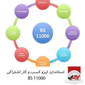 BS 11000